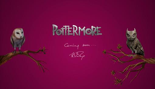 Pottermore ETA 60 minutes!