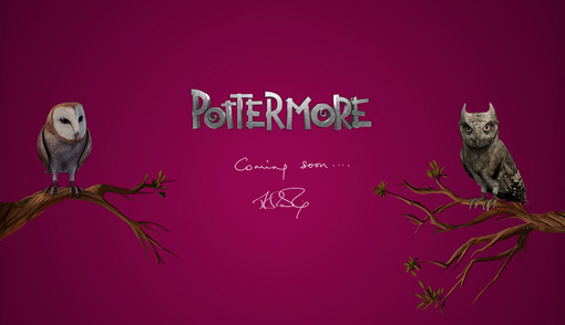Why Pottermore could be too awesome for words